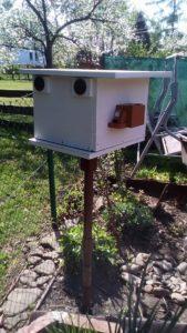 Čmeláci PLUS - Ochrana proti mravencům úlek na stojanu