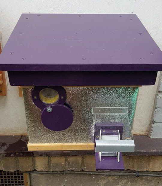 Čmeláci PLUS - Pozorovací_okénko - nasaďte zpět střechu