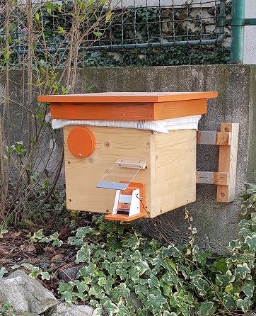 Čmeláci PLUS - Ochrana úlku proti mravencům - úlek na zídce plotu