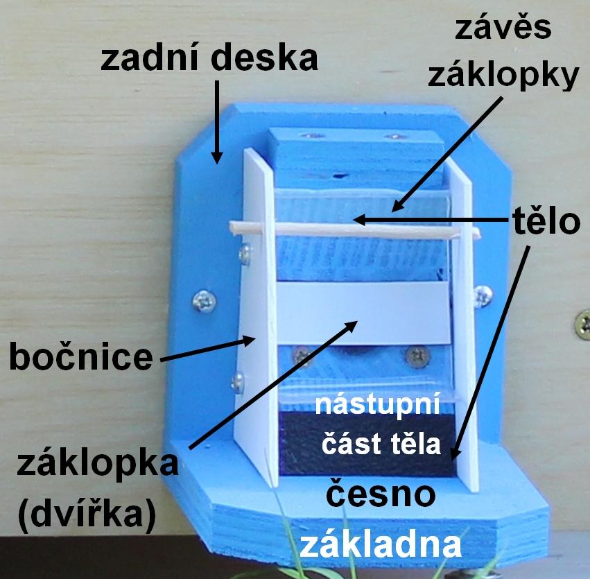 Čmeláci PLUS - Popis čmeláčí klapky co je to česno záklopka bočnice tělo