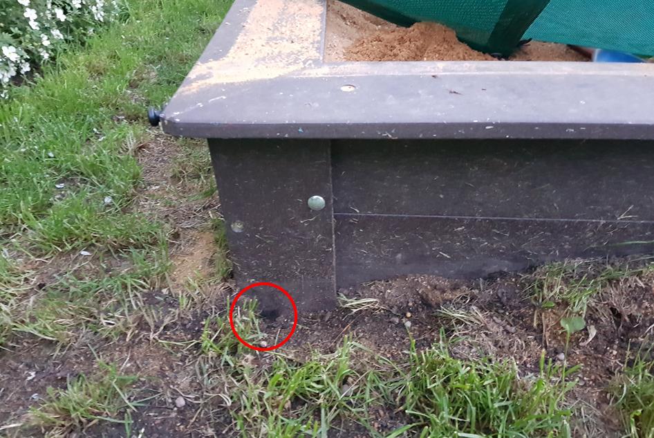 Čmeláci PLUS - Hnízdo čmeláků zemních (Bombus terrerstris) v MŠ Kněževes u Prahy