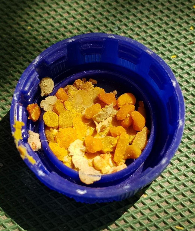 Čmeláci PLUS - Pyl ve víčku od PET lahve