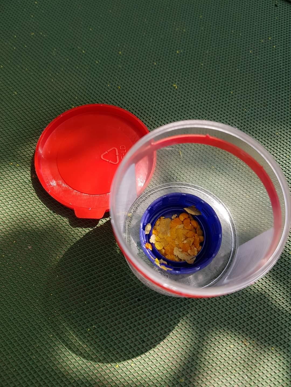 Čmeláci PLUS - Pyl v víčku od PET lahve v dozičce