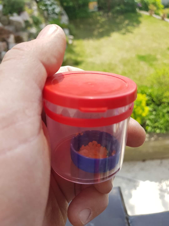 Čmeláci PLUS - Pyl v víčku od PET lahve v dózičce