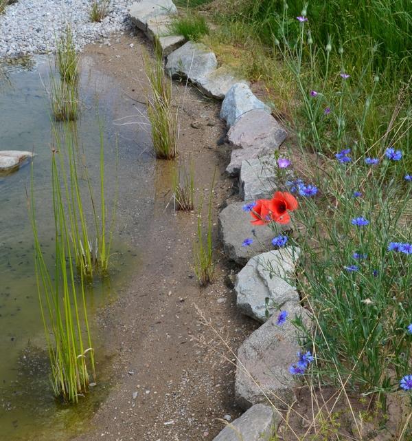 přírodní jezírko řešení srážkové vody