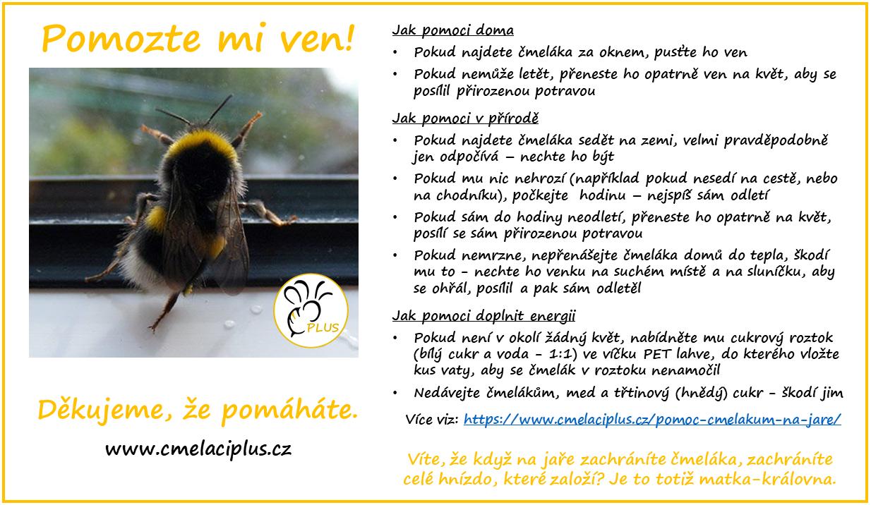 Čmeláci PLUS - Pomáháme čmelákům i přírodě - Čmeláci PLUS