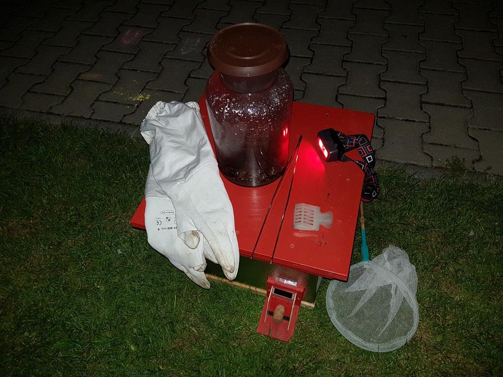 Čmeláci PLUS - Evakuace hnízda - první část evakuace dokončena = matka dělnice umístěny v úlku