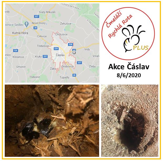 Čmeláčí Rychlá Rota - Akce Čáslav - 2020_06_08
