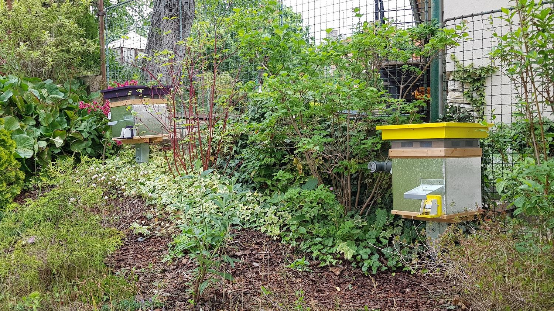 Čmeláci PLUS -Úlky (čmelíny) na zahradě