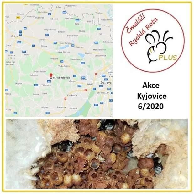 Čmeláčí Rychlá Rota - Kyjovice