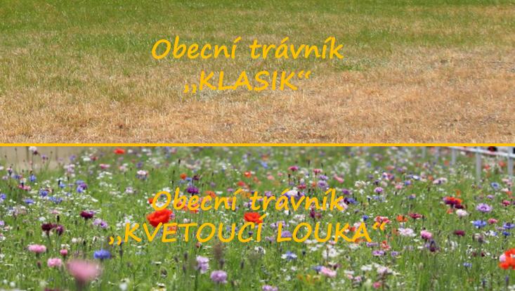 Čmeláci PLUS - Modely obecních travních ploch