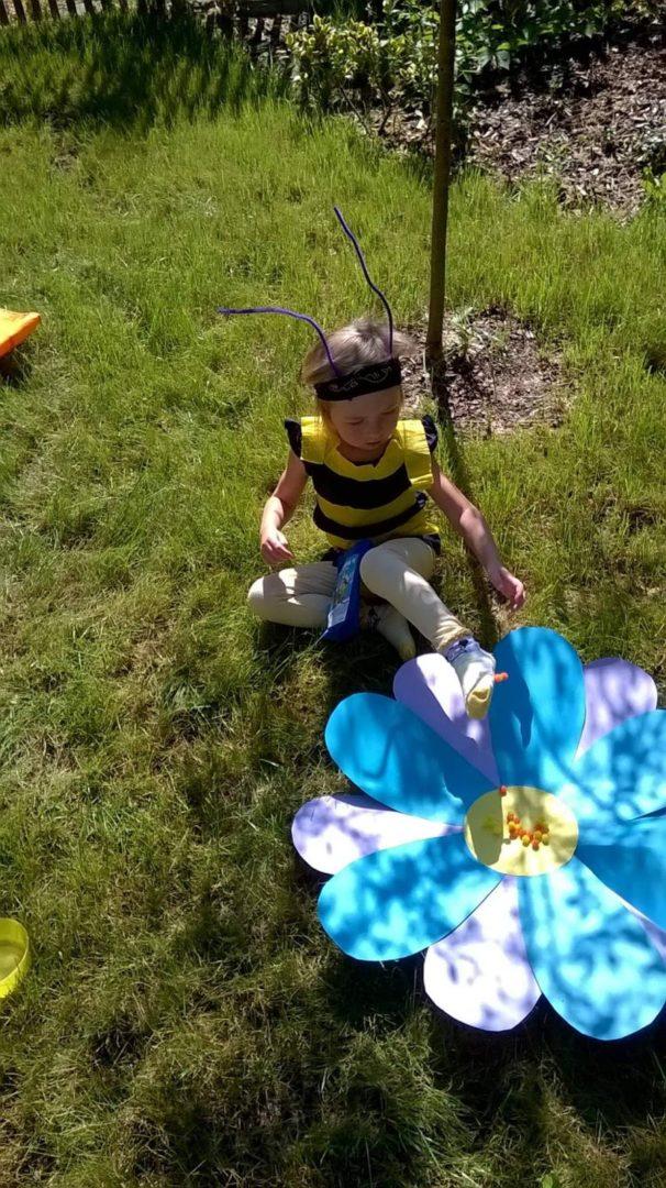 Čmeláci PLUS - Vývoj včely