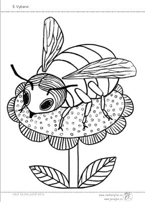 ukázka omalovánky čmeláka pro menší děti