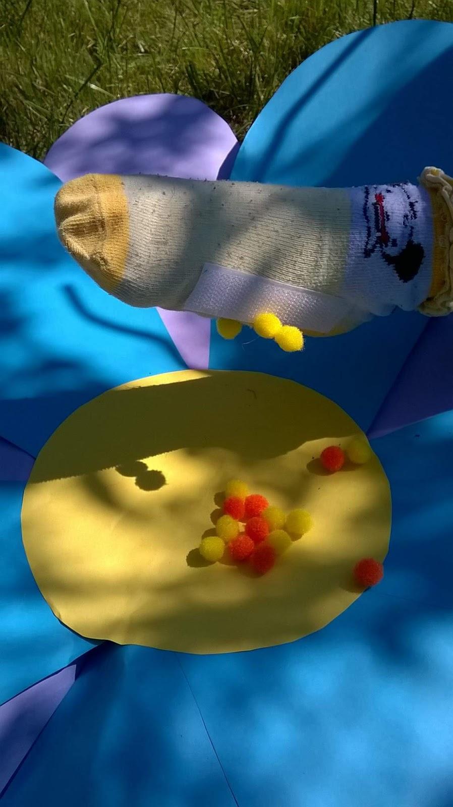 Čmeláci PLUS - O čmelácích - Zásoby pylu 1 - Blog U Meduněk