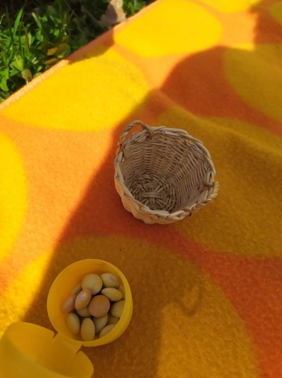 Čmeláci PLUS - O čmelácích - Zásoby pylu 4 - Blog U Meduněk