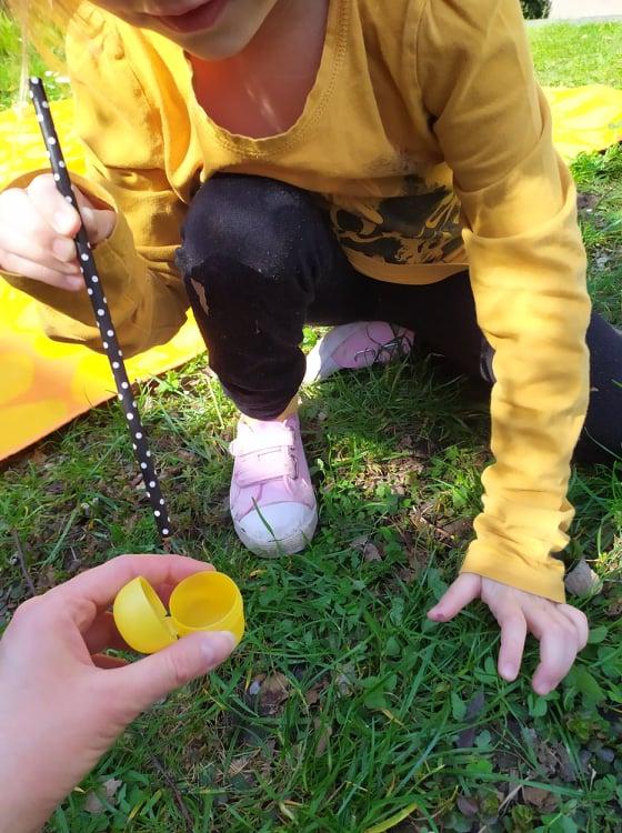 Čmeláci PLUS - O čmelácích - Zásoby nektaru 4 - Blog U Meduněk